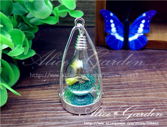 Glass Globe Pendant Jewelry Supply Popular Water Domes Buy
