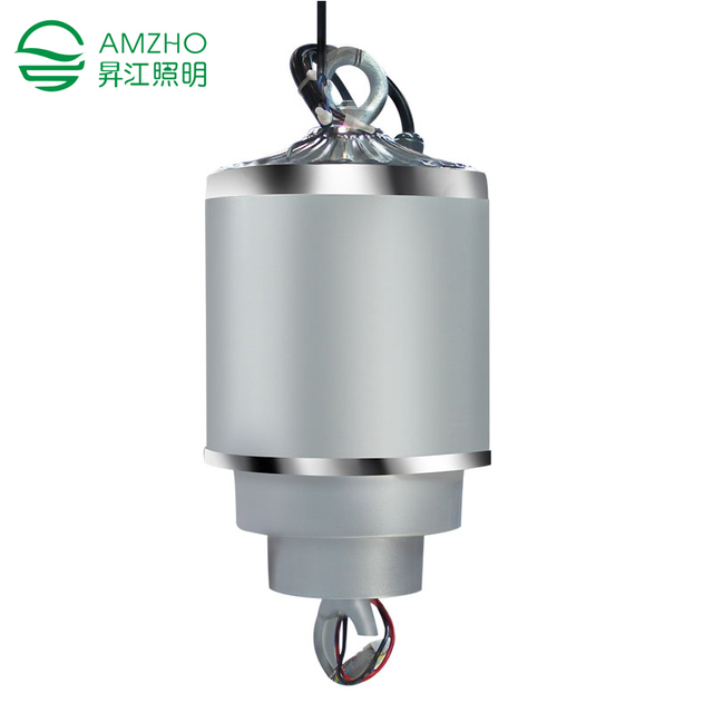 AMZHO 10 KG 12M Dome Light Lamp Lights Lifter Remote Control Chandelier  Hoist Electric Winch Light Lifting System FS 12M10
