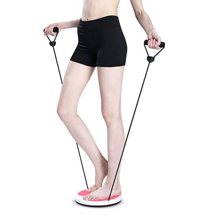 Hot Sales Fitness Equipment Twist Boards Fitness Disc