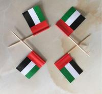 Mini United Arab Emirates Flag Paper Food Picks Dinner Cake Toothpicks Cupcake Decoration Fruit Cocktail Sticks Party Supplies