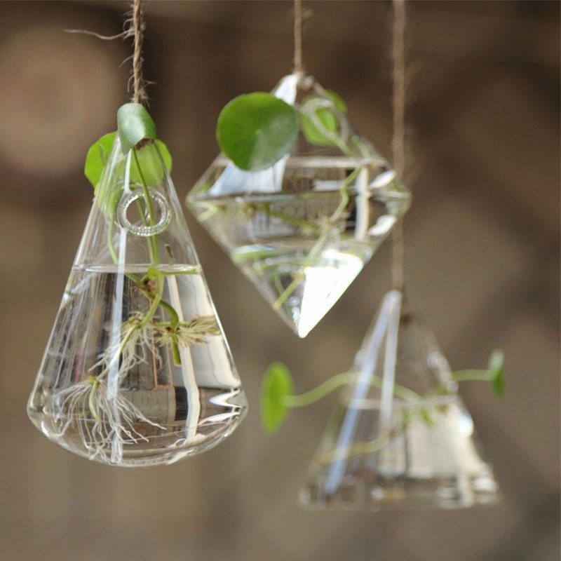 Wall Glass Terrarium Hydroponic Flower Container Indoor Hanging Vase Home  Decor - Glass Terrarium Containers Promotion-Shop For Promotional Glass