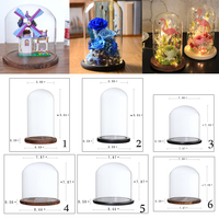 Clear Glass Display Cloche Bell Flower Jar Dome Immortal Preservation Vase Succulents Terrarium Container with Wooden Base
