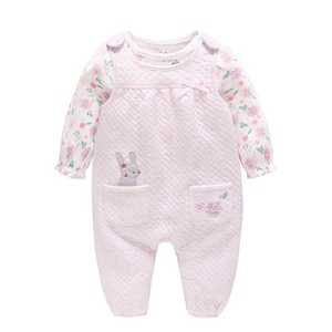 Vlinder Baby Girl Glothes Baby Girl Rompers New Born Clothes Cotton Long-Sleeve Cute bodysuit 2pcs Set Baby girl Jumpsuit(China)