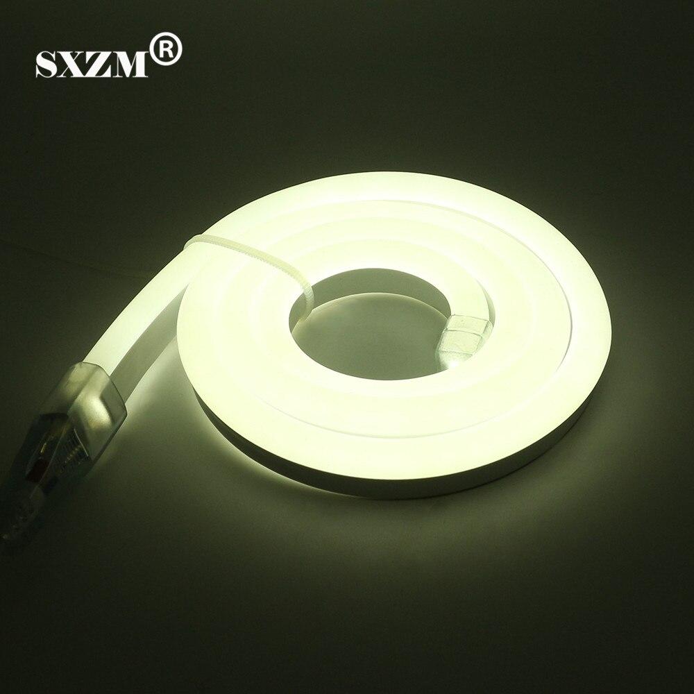 SXZM 220 V 2835 Neon luce di striscia del led corda flessibile 120led/M Fata illuminazione IP68 Impermeabile con la spina di UE, decorazione esterna