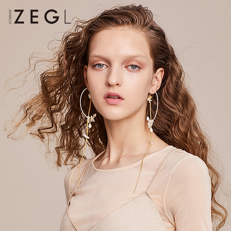 ZEGL hoop earrings circle earrings fashion ladies earrings tassel long earrings pendant