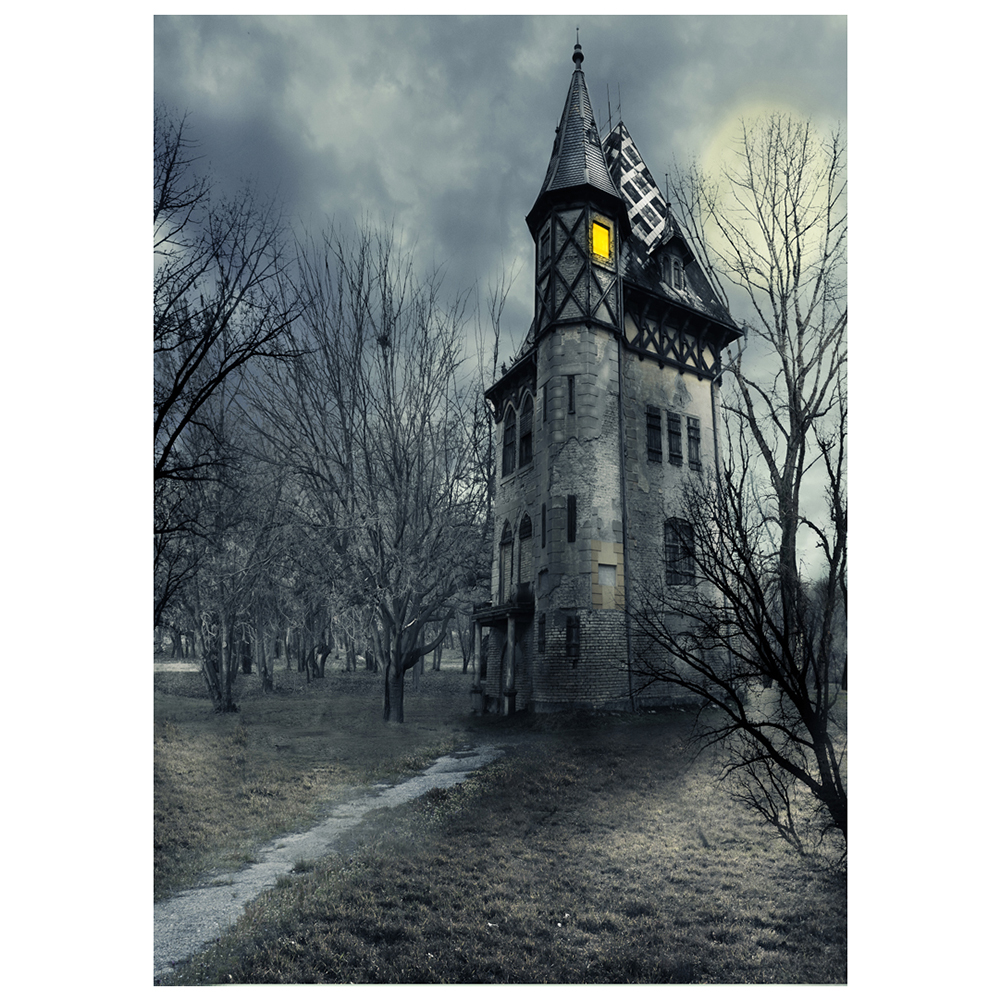 Vinyl Photography Background Photo Backdrops Magic Theme Photography Studio background Horror castle, woods, grass, path for H vinyl photography background photo backdrops magic theme photography studio background props skull bones for halloween 2 1 1