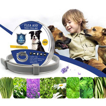 Adjustable Anti Flea Tick Neck Collar for Dog Cat Pet 8 Months Protection Collars Supplies Small