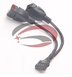 PC Motherboard USB2.0 9Pin Female to Dual A Female Splitter Data SHORT Cable Cord 24AWG Wire For USB Device External to Internal  20pcs pc computer motherboard internal usb 9pin male to external usb male data extension cable shielding 20cm
