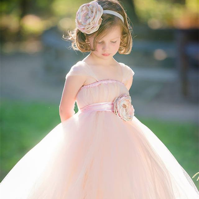 Online shop 2016 new charm blush and light pink flower girl dress 2016 new charm blush and light pink flower girl dress with headband girl party evening dress flower girl tutu dress for wedding mightylinksfo