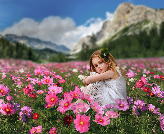 Pink Flower Field Mountain Bokeh Background Vinyl Cloth High Quality