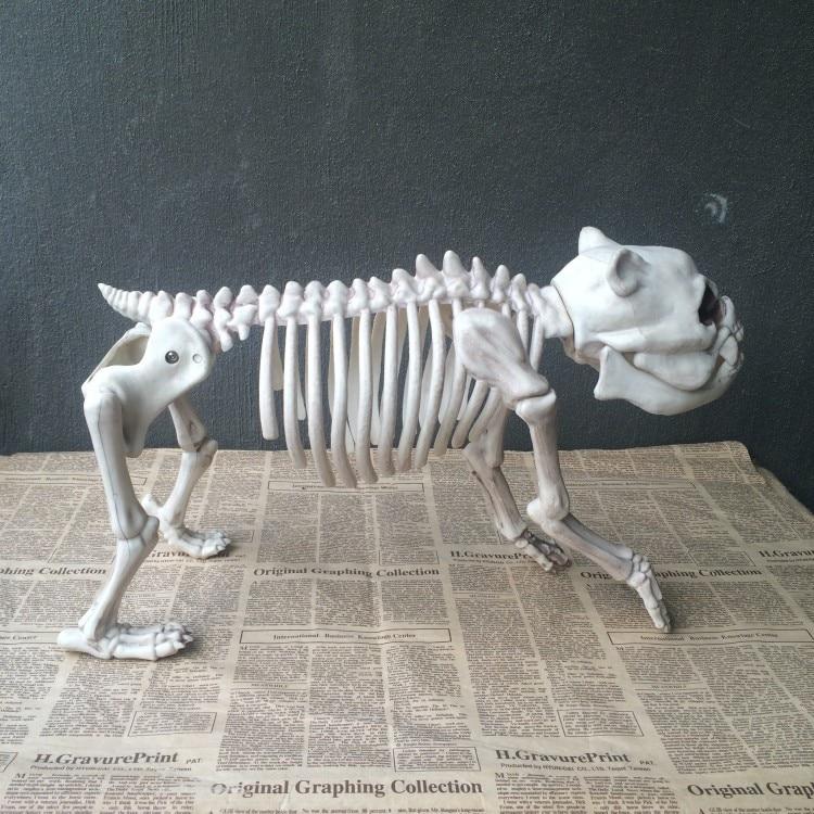Halloween Prop crâne chien squelette Animal pour la décoration de fête