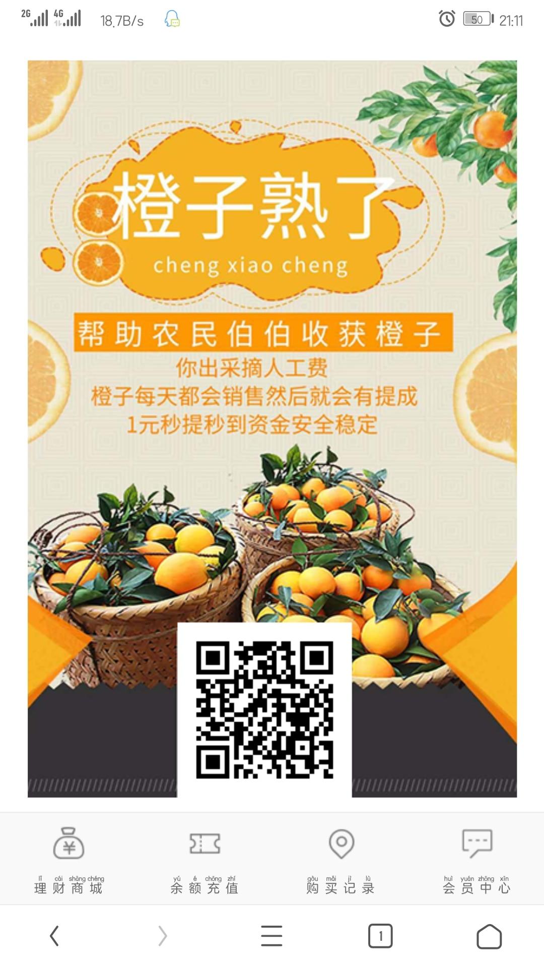 一元源码:橙子熟了每日分红8级分销