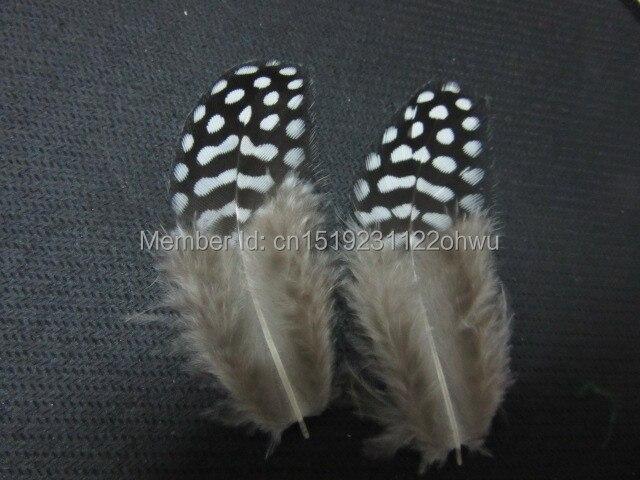 wholesale 20pcs high quality beatiful natural guinea fowl feather 4-8cm / 2-3inch Decorative diy