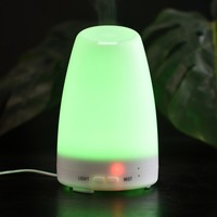 Aromatherapy Essential Oil Diffuser Inclined Mouth Air Humidifier With Colorful LED Lights Mist Maker US Plug