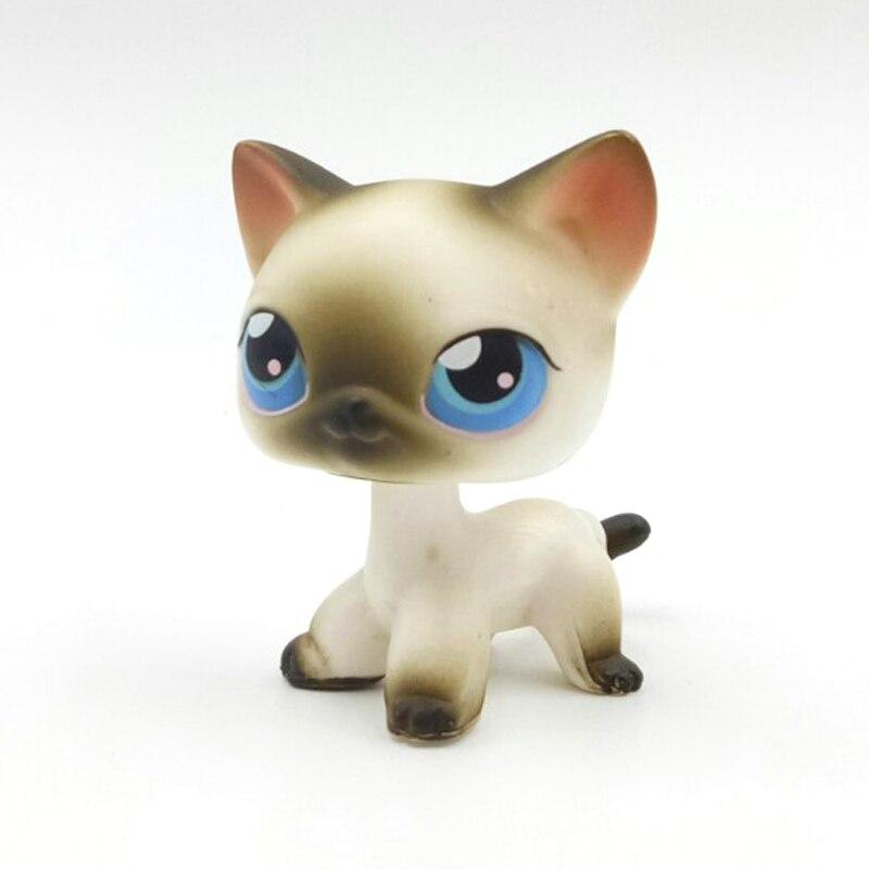 Nouveau pet shop lps jouets debout réel rare gris blanc cheveux courts chat #5 #468 violet #933 animal collection jouets kitty livraison gratuite