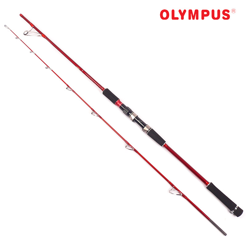 Spinning rod and casting fishing rod 2 1 m for Big game fishing rods