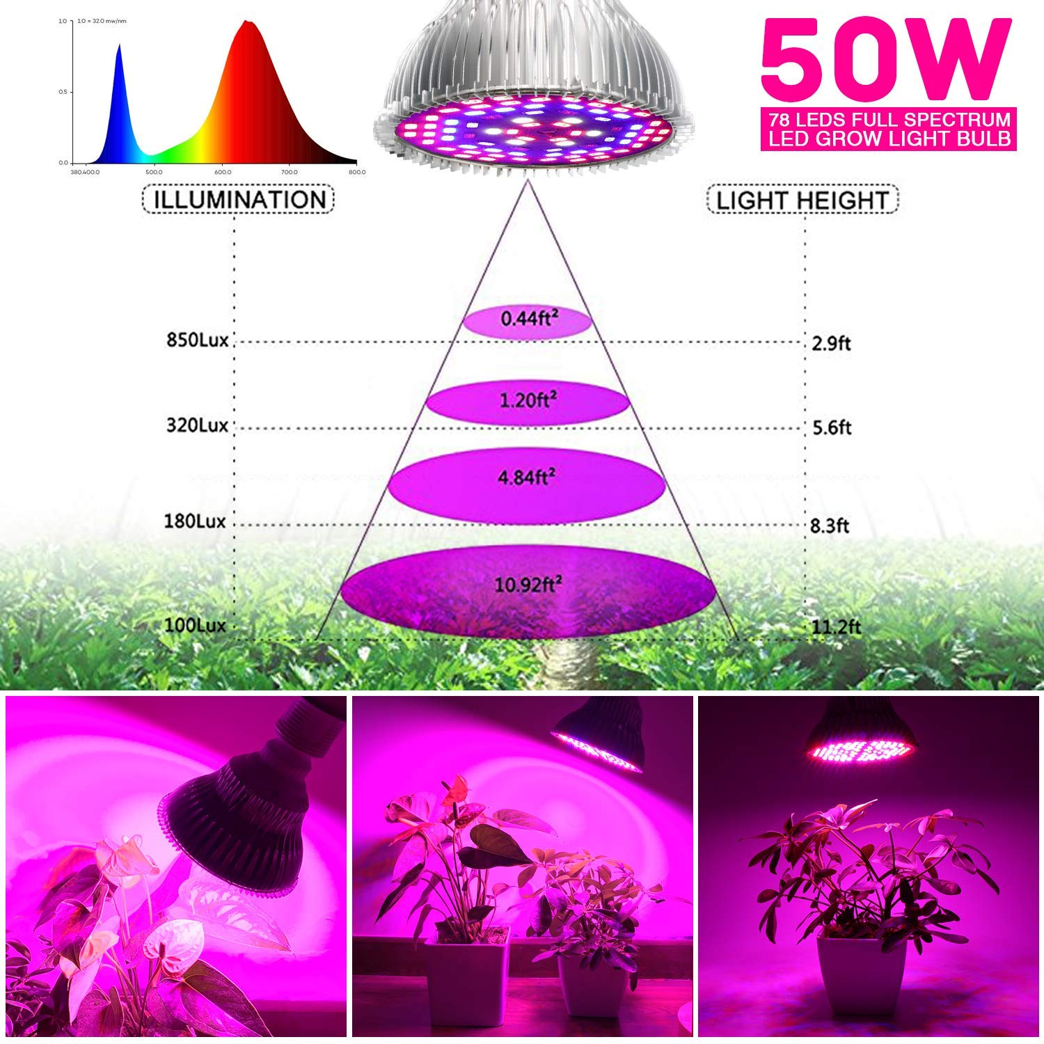 Image 5 - LED Grow Light Bulb 50W Indoor Plants  Bulbs Full Spectrum Lamp Vegetables Flowers for Hydroponics Greenhouses GardeningGrowing Lamp Bulbs   -