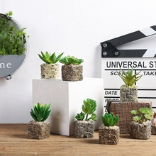 Simplicity Resin Succulent Plant Home Decoration Accessories Simulation Of Pot Culture Office Bathroom Bedroom Decor