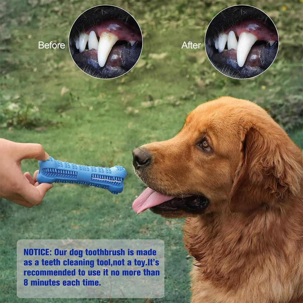 Cepillo dental para perro masticable 5
