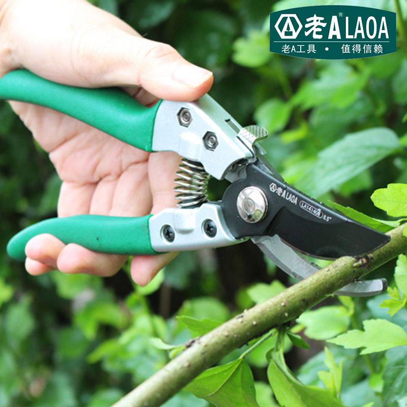 LAOA SK5 Garden Scissors High quality Stainless Steel Scissor for Household and Garden Shears от Aliexpress INT