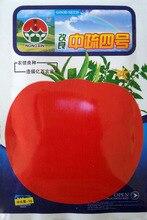 Балкон горшках семена овощных культур в высоту 4 семена помидоров Помидоры 5 грамм/мешок