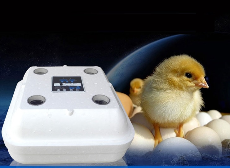 36 Eggs or 42 Eggs Incubator Chicken Duck Goose Quail Egg Incubator Electronic Display Thermostat Automatic Manual Incubator-in Feeding & Watering Supplies from Home & Garden    1