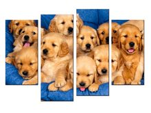 4 pieces / set labrador puppies dogs poster print wall sticker Wall Decor painting custom print(China)