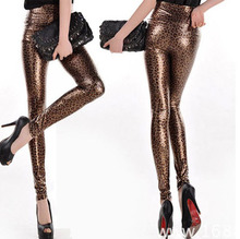 Leopard And Snake Print Leggings [6 Colors]