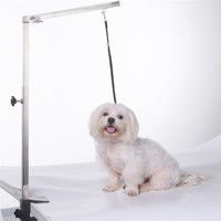 Foldable Pet Cat Dog Grooming Arm 62cm Stainless Steel Pets Puppy Grooming Table Suspension Bracket Without