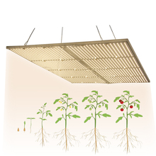 led grow light quantum board Samsung LM301B LED Full spectrum 240W 480W 960w samsung 3000K 660nm,Veg/Bloom state Meanwell driver