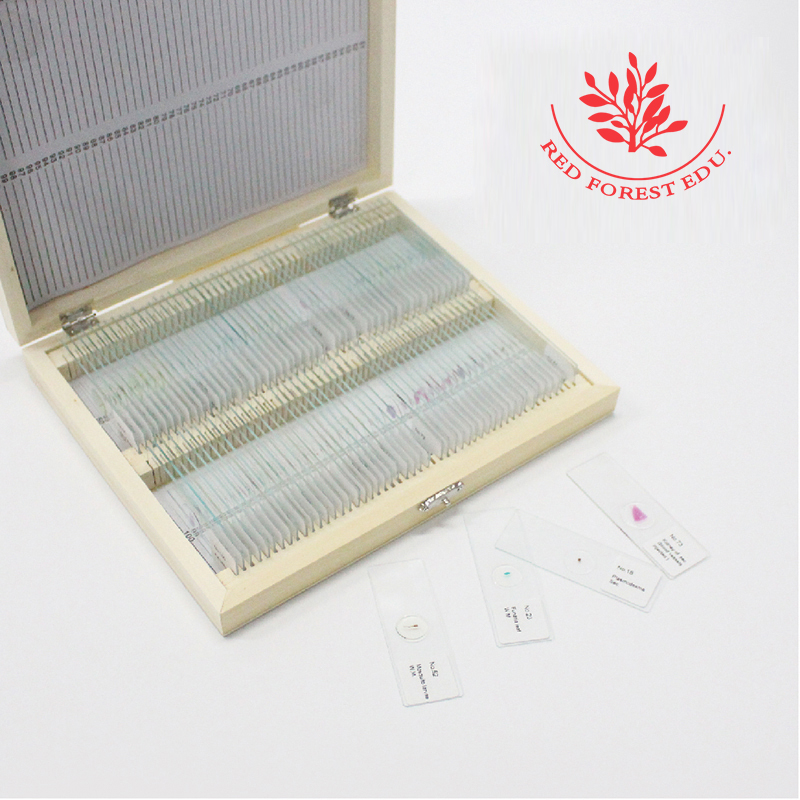 Basic Biological Science Education fixed 100 pieces (50 plant & 50 Animal) set microscope prepared slides specimen hot sale ce iso 100 pc prepared microscope glass slides for various plants insects and animal tissues set a