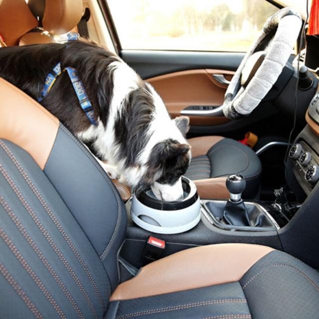 Car Feeding Bowl for Dogs