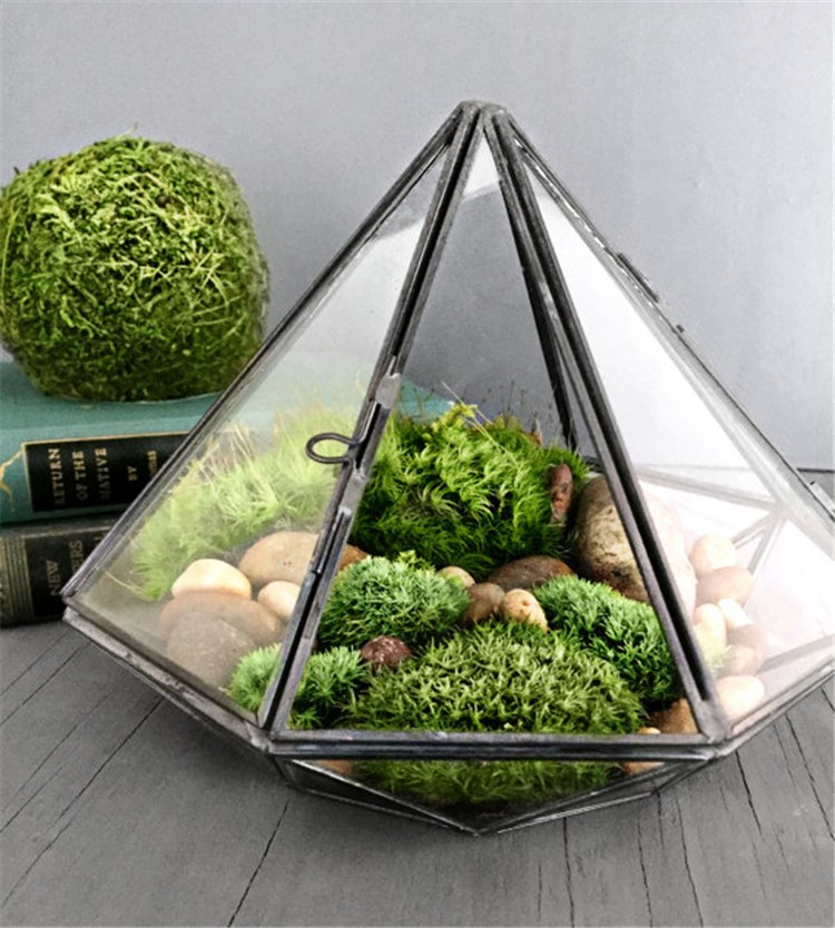 Diamond Geometric Polyhedron Glass Terrarium7
