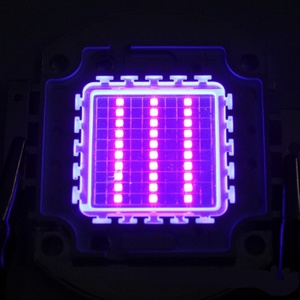 Image 2 - מתח גבוה Led שבב 100 W סגול אולטרה סגול (UV 395 ~ 400nm) SMD COB אור 100 W אולטרה ויולט הנורה מנורה