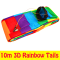 O envio gratuito de alta qualidade 10 m 3D caudas pipa nylon ripstop tecido placa polvo pipa albatroz dupla stunt kite flying eagle pipa