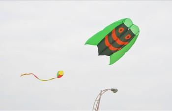 Tradycyjny chiński duże miękkie zabawa fabryka vlieger cerf volant latawce dla dorosłych latawiec latający windsock ripstop rybki koi w dynamicznym brinquedos tanie i dobre opinie 12-15 lat 5-7 lat 8 lat 6 lat Dorośli 8-11 lat NYLON Pojedyncze cartoon Walkinsky Unisex Kite bar safe