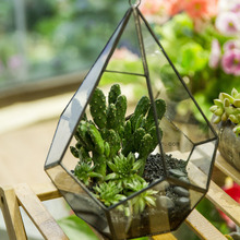Modern Glass Box Artistic Clear Glass Geometric Terrarium Five-surfaces Diamond Succulent Fern Moss Terrarium with Loop Hanging