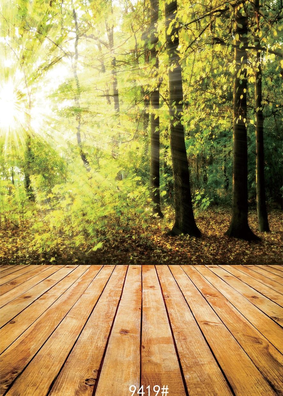 background studio forest backdrops backdrop sunshine children fond natural vinyle wood
