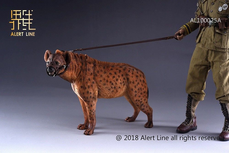 1:6 AL100025B Alert Line Crocuta Animal Toys Crocuta Dog Model Fit 12/'/' Figure