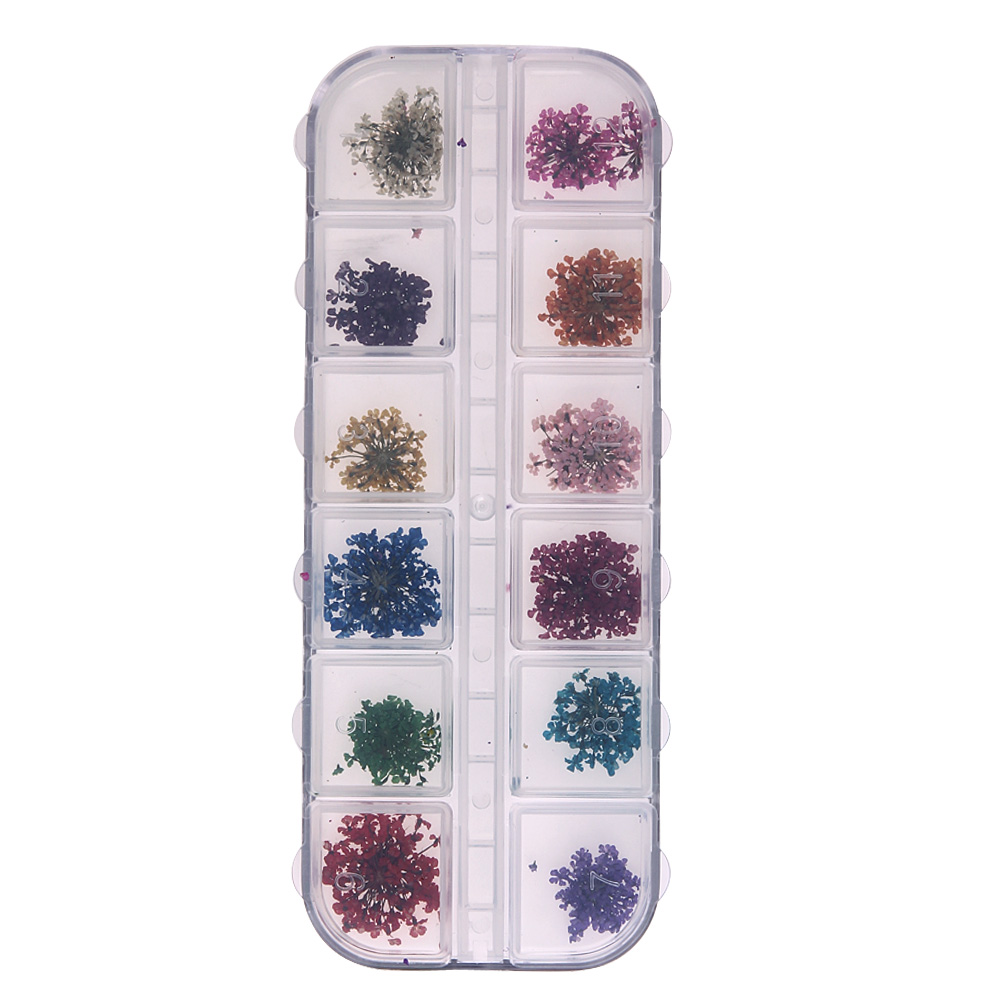 цена на 12 Lattice/Color 3D Dried Flower Nail Art Decal Dry Flowers Manicure Real Natural Petal DIY Manicure Tools