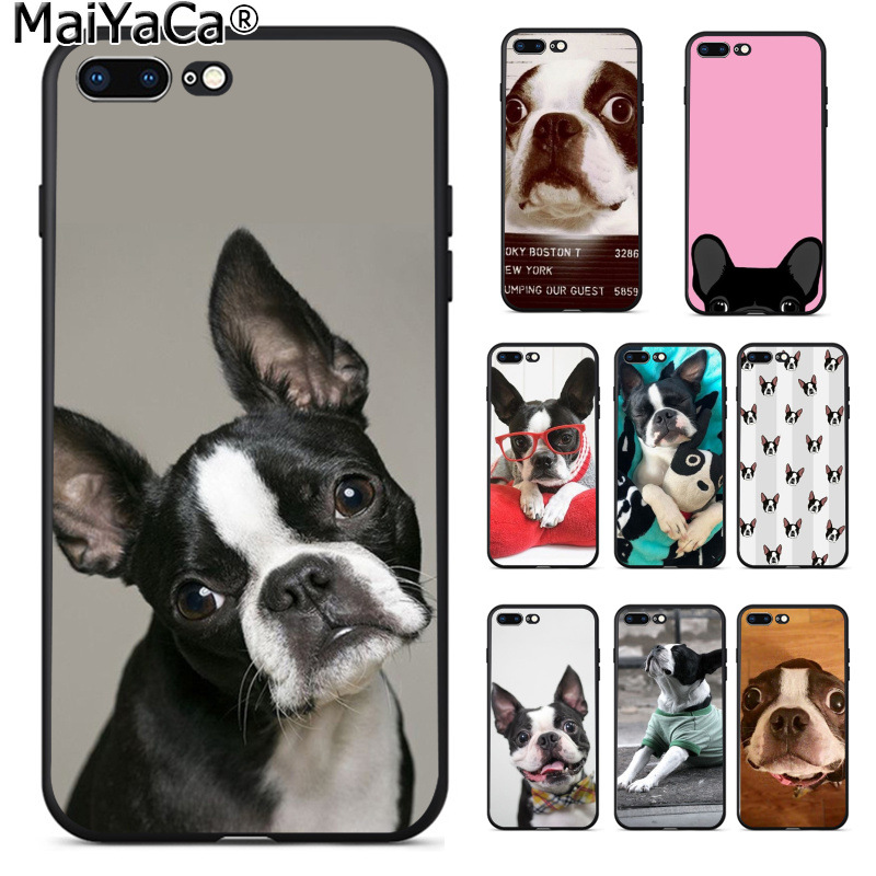 MaiYaCa Animal boston terrier dog Pattern TPU Soft Phone Accessories Phone Case for iPhone 8 7 6 6S Plus X XS MAX 5 5S SE XR