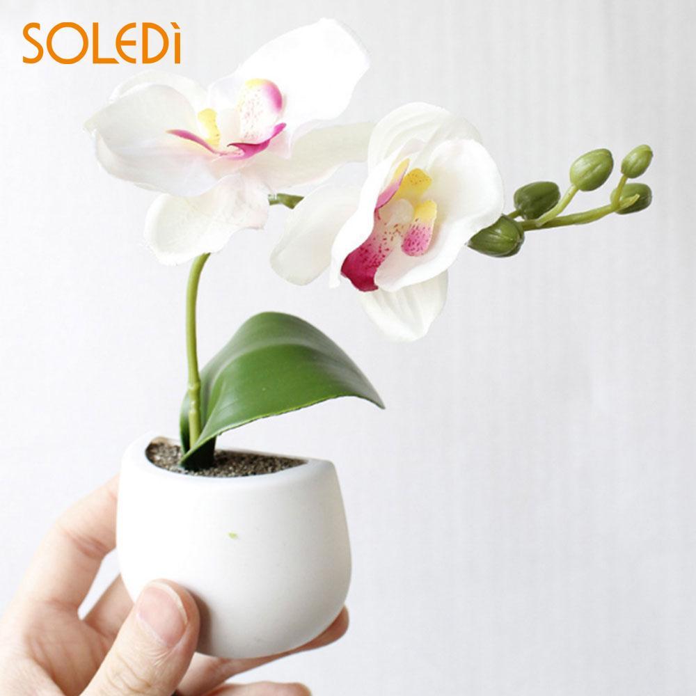 1 Pc Kühlschrank Aufkleber Kreative Kunststoff Topfpflanze Kühlschrank Magnet Aufkleber Botanik Mode Kühlschrank Magnet Magnet Nützlich Küche
