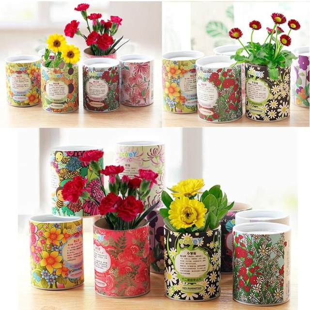 Flower Nursery Potting Fiber Container Constellation Flowers And Plants Desktop Ecological Small Garden Office Planting
