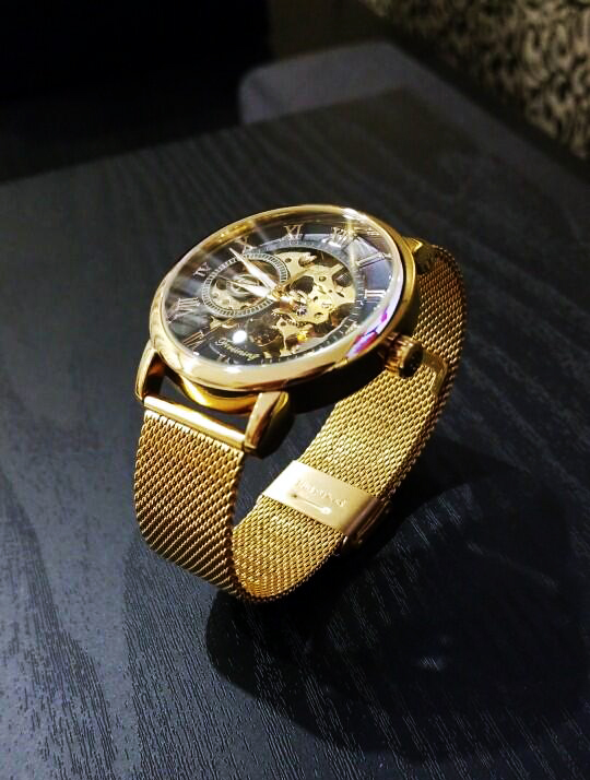 HTB1b4kdXovrK1RjSspcq6zzSXXaQ Forsining Transparent Case 2017 Fashion 3D Logo Engraving Golden Stainless Steel Men Mechanical Watch Top Brand Luxury Skeleton