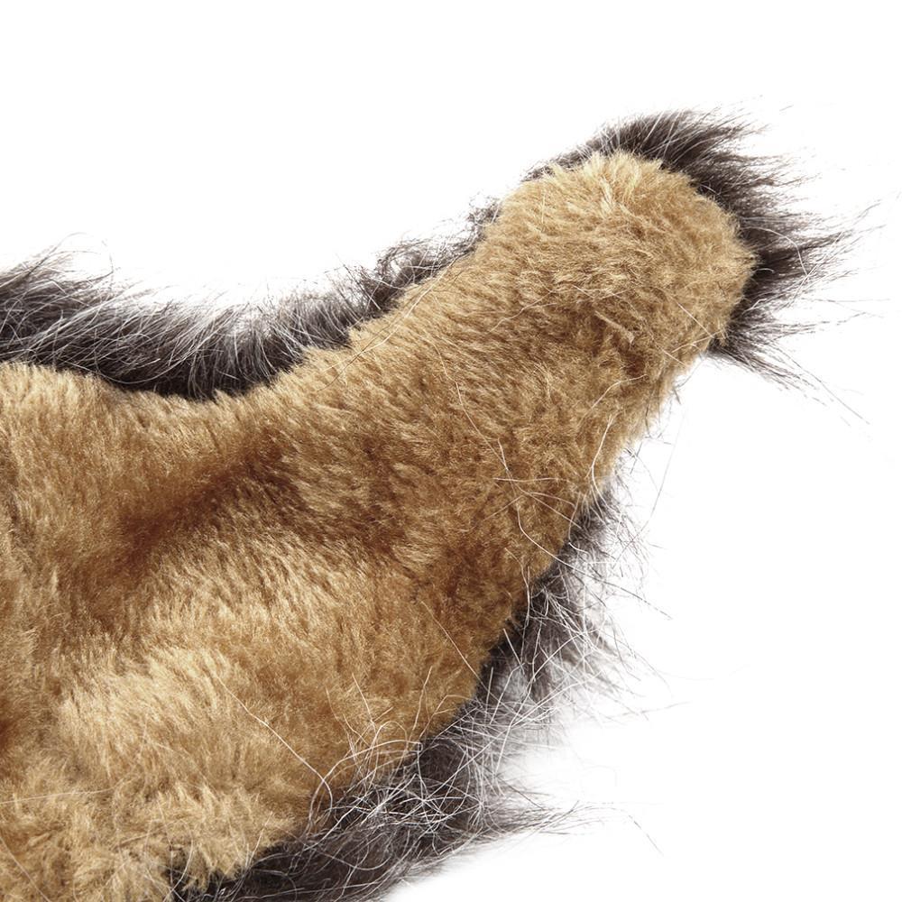 lion hair for dog