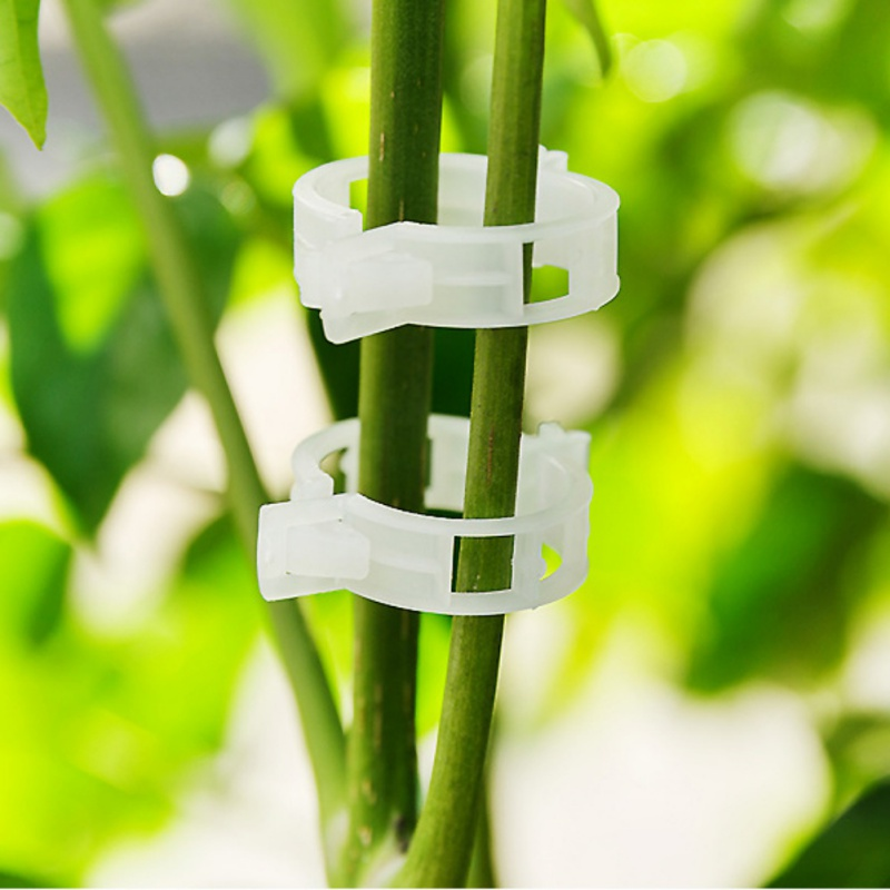 100Pcs Garden Plant Support Clips Connects Plants Vine Tomato Vegetable Fastening Clip Plant Plastic Clip Supplies