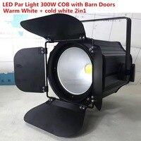 300W COB LED Par luz con puertas de Granero aluminio luz estroboscópica Led iluminación de escenario blanco cálido RGBWA + UV 6i