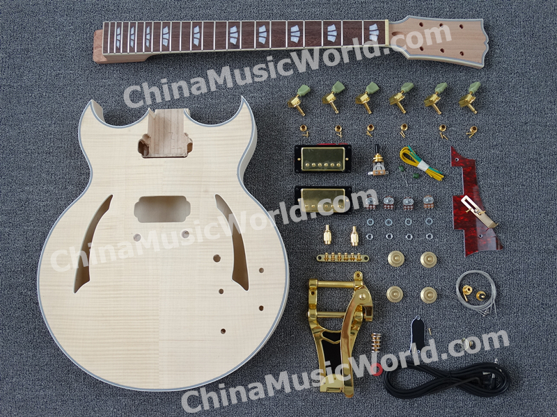 hollow body Electric guitar Kit of Afanti Music AHB 730