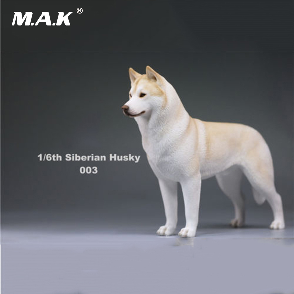In stock 1/6 Action Figure Accessory Siberian Husky Simulation Animals Sixteenth 003 Pet Dog Model Toys for 12'' Action Figure creative sled dog bulldog model pinata toys pet dog piggy bank bull terrier akita dogs siberian husky dogs save money tank model