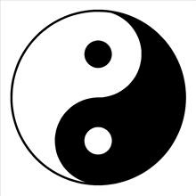 D189 YIN YANG SYMBOL YING-YANG WALL ART ROOM STICKER VINYL DECAL